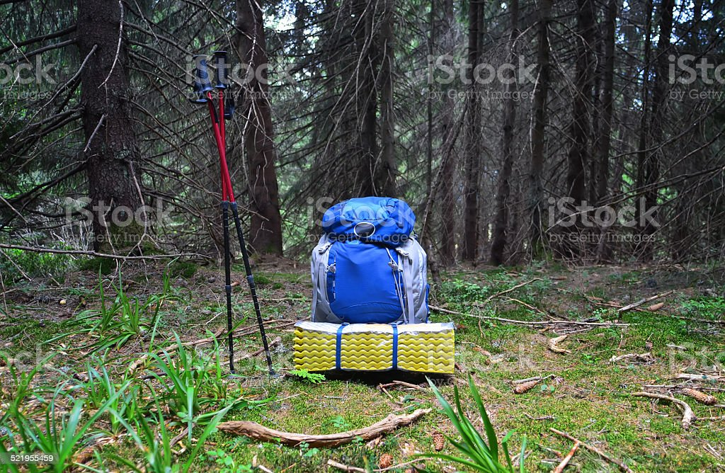 Backpack in the  outdoor forest stock photo