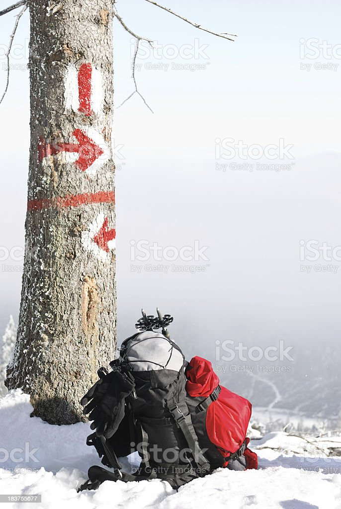 backpack under tree in winter scene royalty-free stock photo