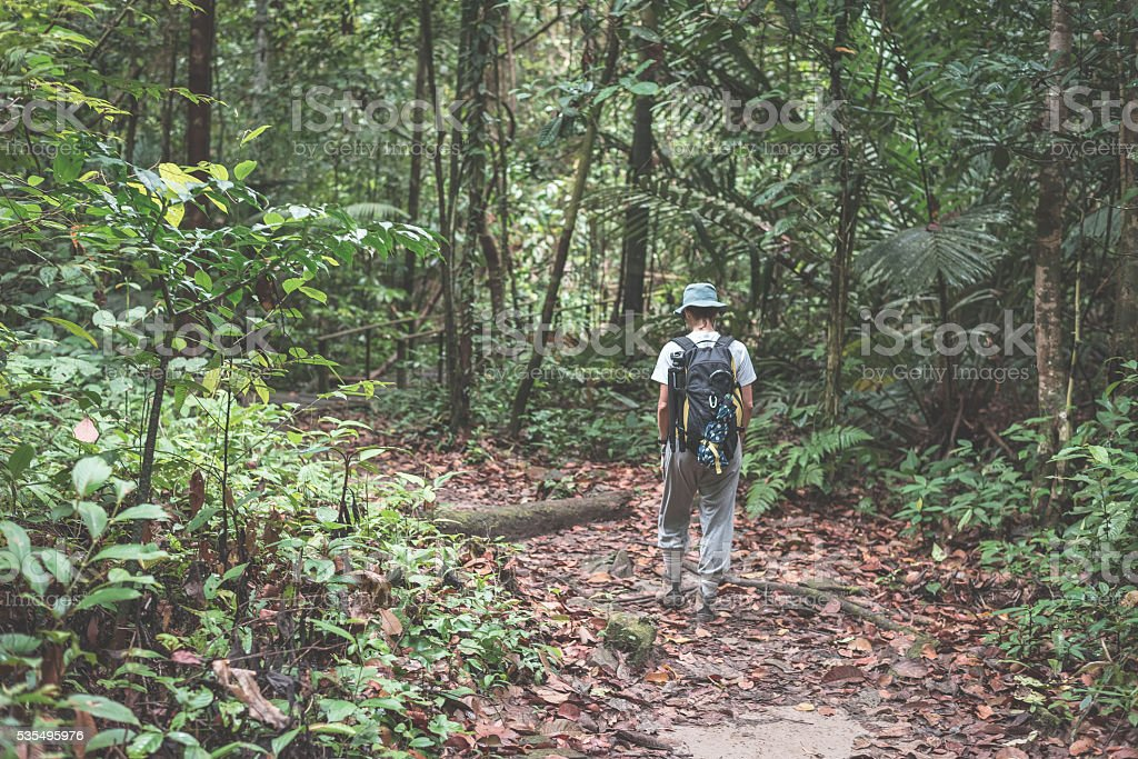 Backpacker exploring Borneo rainforest, toned image stock photo