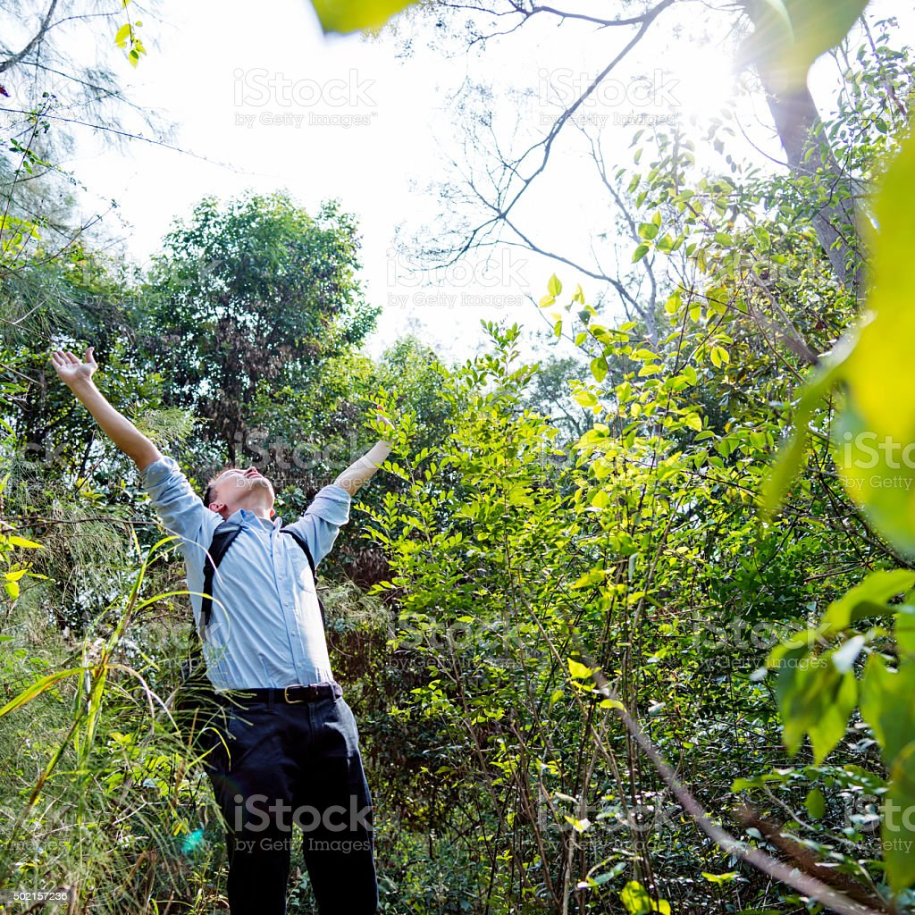 backpacker in forest stock photo