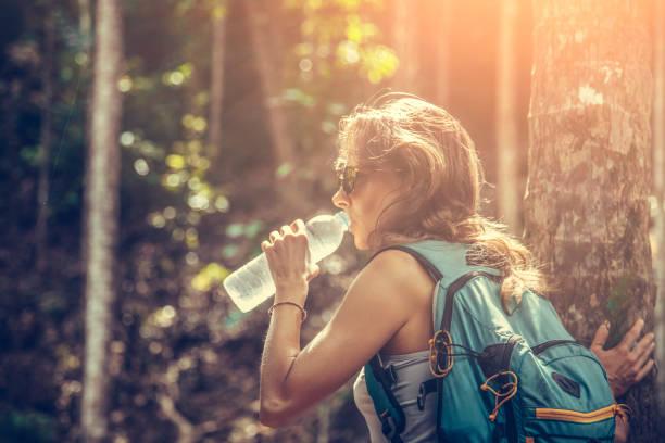 backpacker im regenwald - leitungswasser trinken stock-fotos und bilder