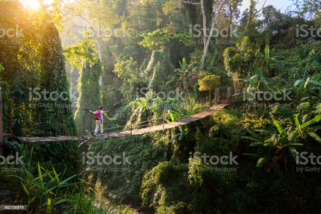 Backpacker en puente en la selva - foto de stock