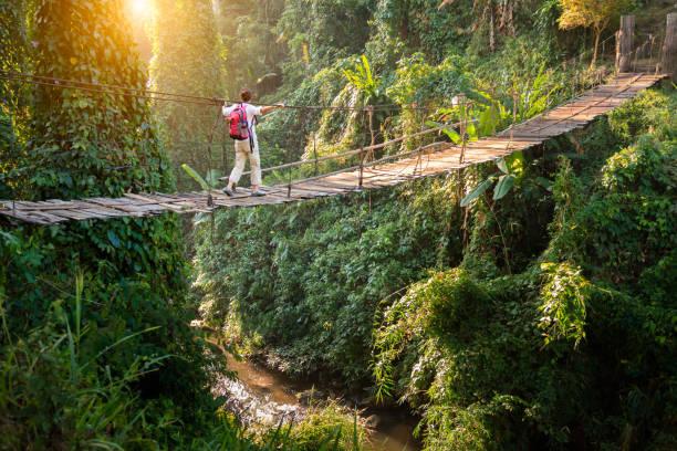 熱帯雨林の吊り橋のバックパッカー - 自然旅行 ストックフォトと画像