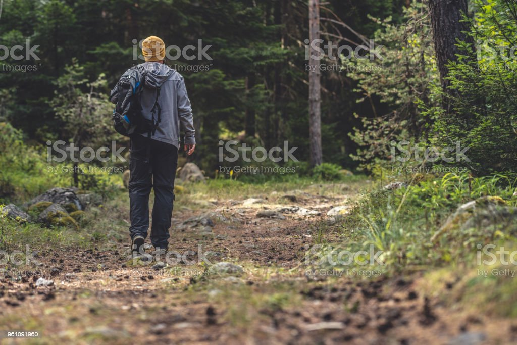 Backpacker walks by trail in the woods - Royalty-free Adult Stock Photo