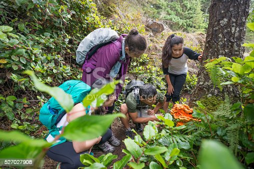 An extended family of hikers with backpacks stop to look at an edible mushroom (Laetiporus Cincinnatus, commonly known as Chicken of the Woods) during a hike through a remote wilderness park in Sooke, British Columbia, Canada.  Real, two generation multi-ethnic family.