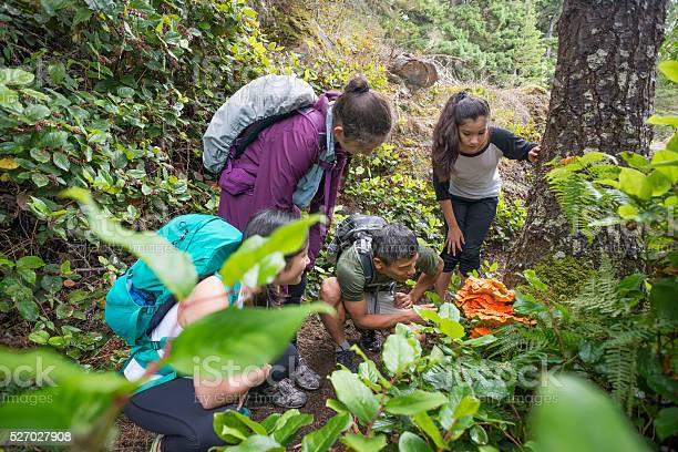 Backpackers examine an edible orange mushroom while hiking through picture id527027908?b=1&k=6&m=527027908&s=612x612&h=s6pjmptuxpbzj9hnjqsof2tfejjidrofnohbuavopi4=