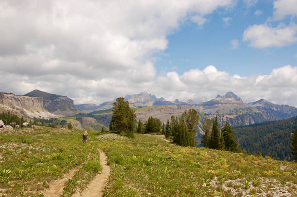 Backpackers on Teton Crest Trail stock photo