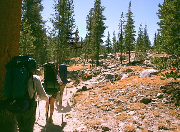 backpackers - boy scout fotografías e imágenes de stock