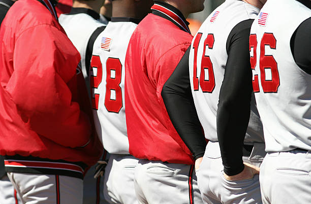 Backs of baseball players in a line stock photo
