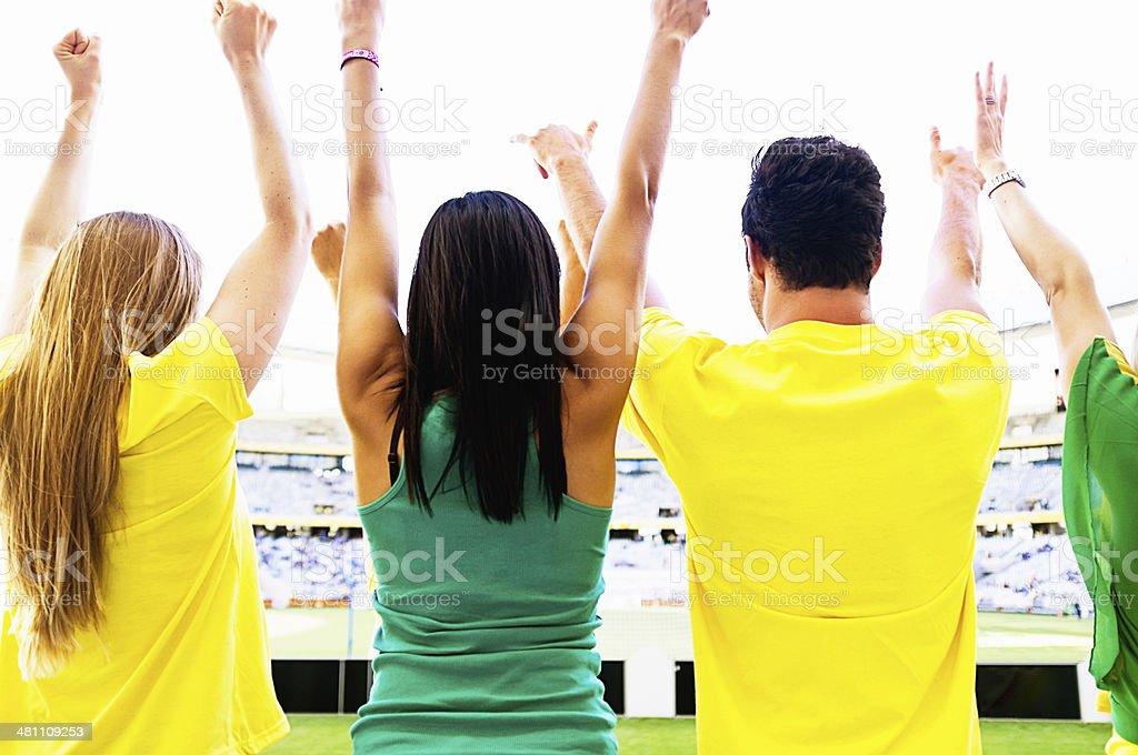 Backview of waving Brazilian soccer fans at football match stock photo