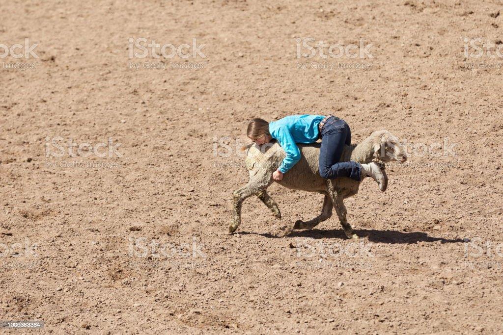 Backwards Mutton Busing stock photo