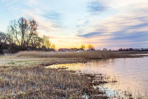 altwasser landschaft auf der insel usedom - usedom stock-fotos und bilder