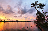 Palm trees in the Backwaters of Kumarakom at sunset, Kerala, India.