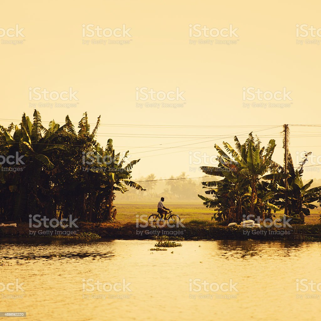 Backwaters of Kerala Man on silhouette cycling alongside a canal in the south of India 2015 Stock Photo