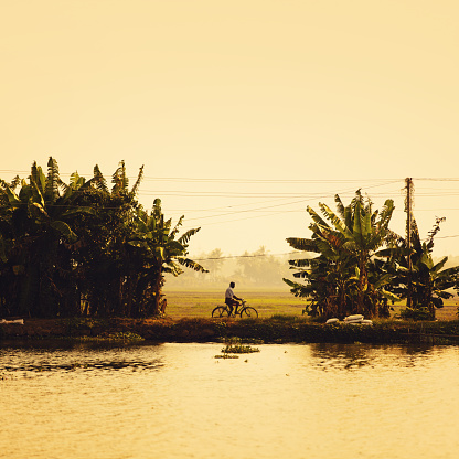 Backwaters Of Kerala Stock Photo - Download Image Now
