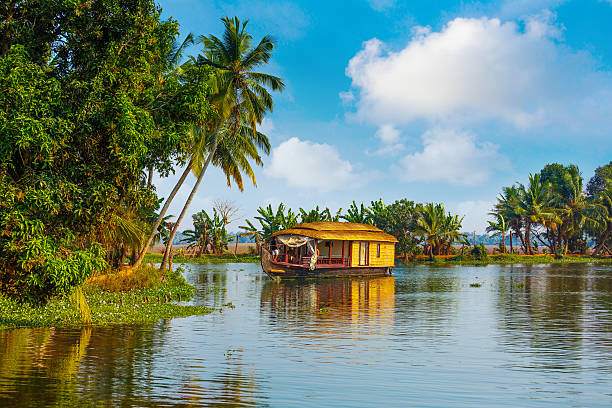 backwaters of kerala - south stock pictures, royalty-free photos & images