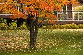 Autumn in Canada. Beautiful autumn scene in Ontario Province.