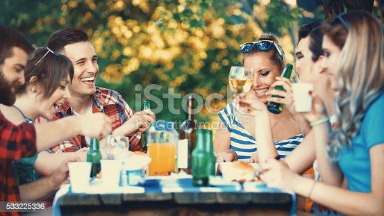 istock Backyard dinner party. 533225336
