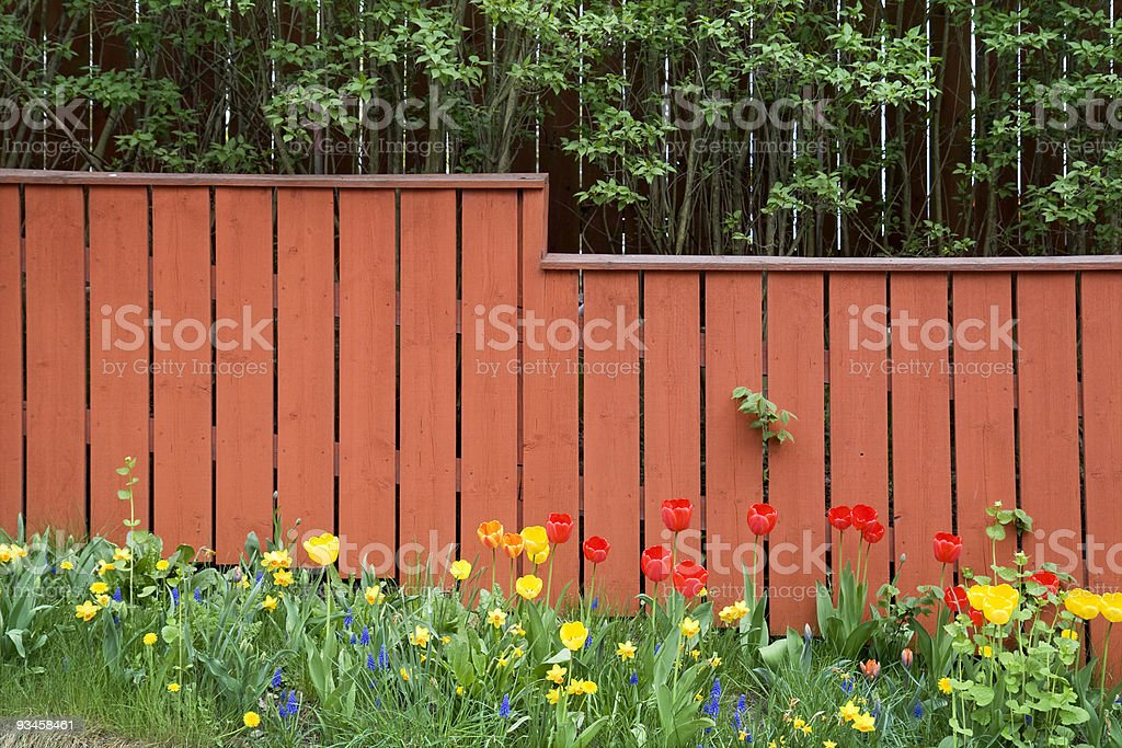 Backyard fence royalty-free stock photo