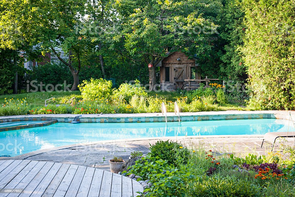 A backyard garden with a swimming pool  stock photo