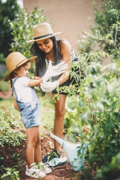 garten im backyard - gartenarbeit stock-fotos und bilder