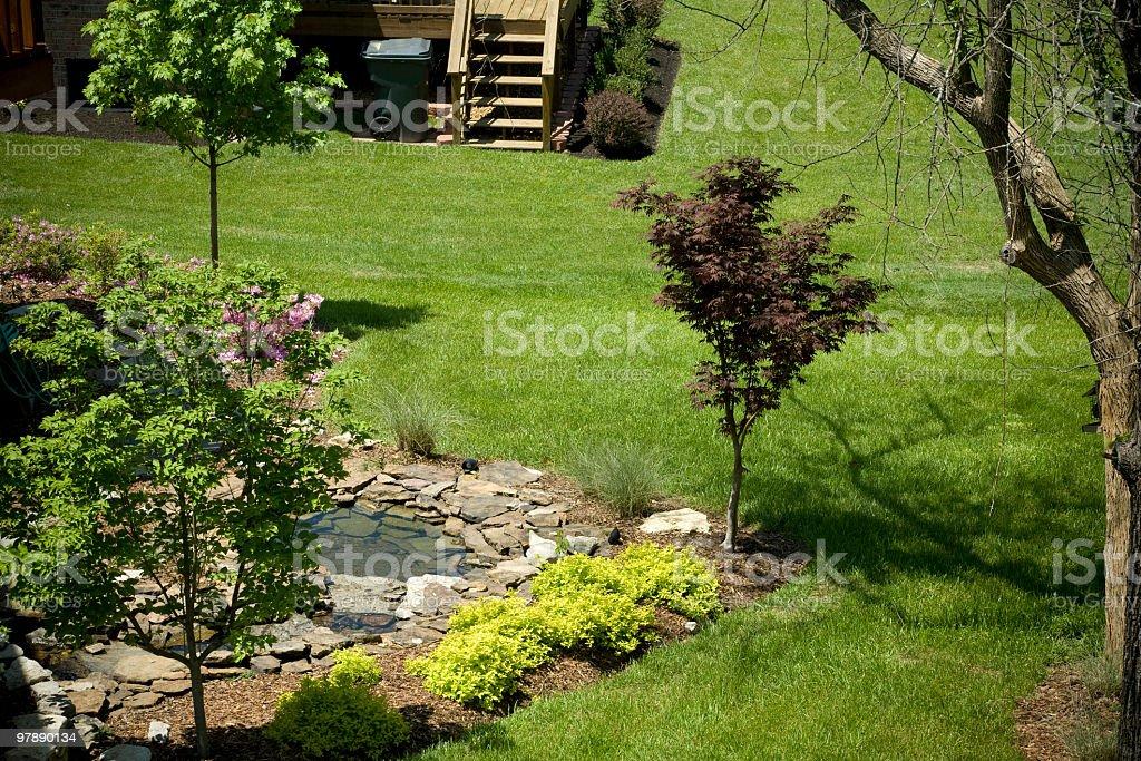 Backyard Landscaping royalty-free stock photo