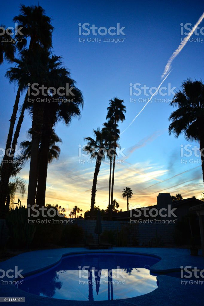 California Fan Palm Trees are seen in silhouette at sunrise over a...