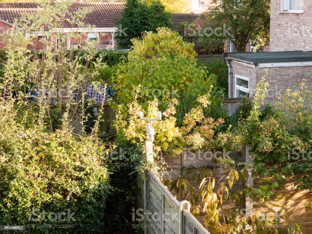 Hinterhofszene Mit Zaun Grüne Bäume Garten Stockfoto und