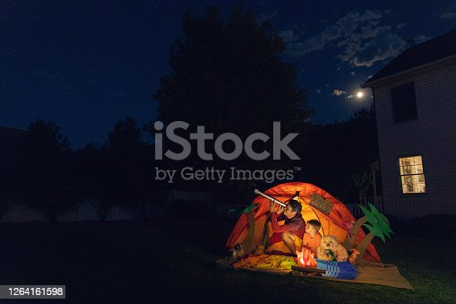 A dad with his son camp out in the backyard of their home due to the coronavirus restrictions and quarantine. They have pitched a tent and created a beach scene with stuffed animal friends and have a fake campfire. They are searching the twilight for the stars in the sky.