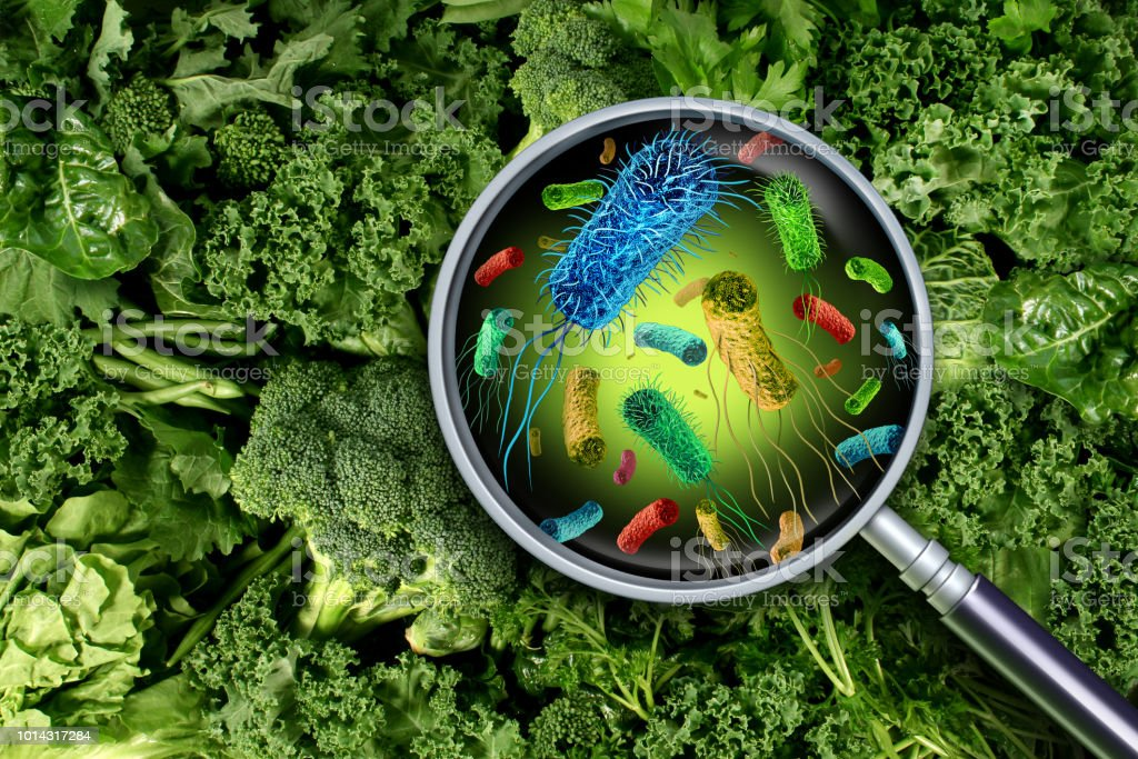 Bacteria And Germs On Vegetables stock photo