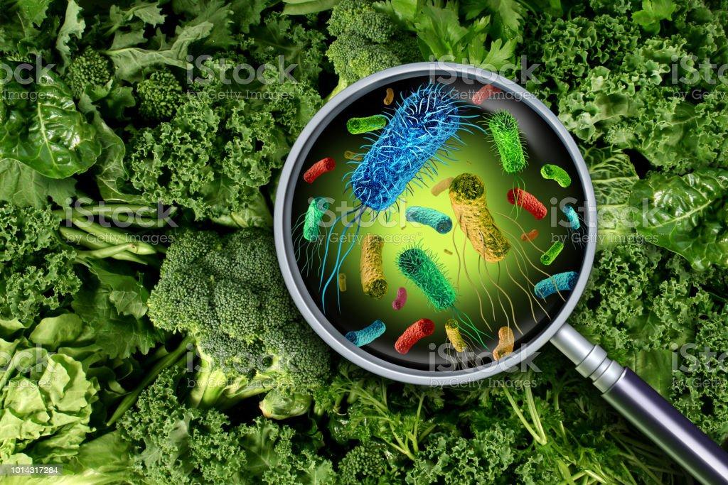 Bakterien und Keime auf Gemüse – Foto