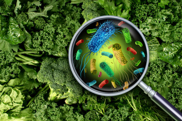 Bacteria And Germs On Vegetables Bacteria and germs on vegetables and the health risk of ingesting contaminated green food including romaine lettuce as a produce safety concept 3D render elements. prokaryote stock pictures, royalty-free photos & images