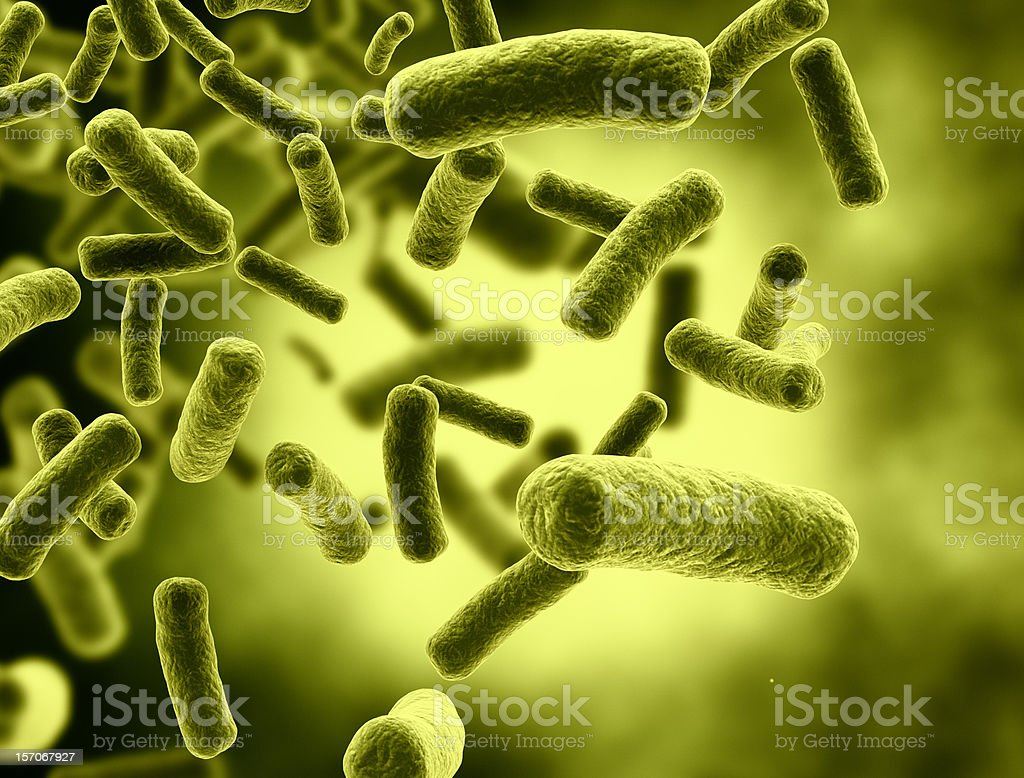 Bacteria Cells with selective focus stock photo