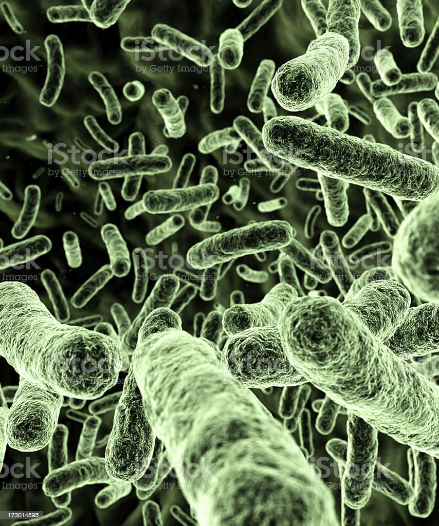 Bacteria [green] stock photo