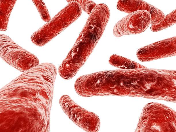 bacteria illustration stock photo