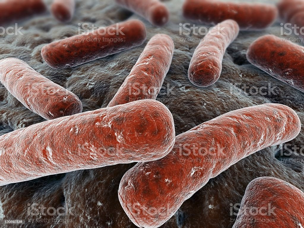 bacteria illustration royalty-free stock photo