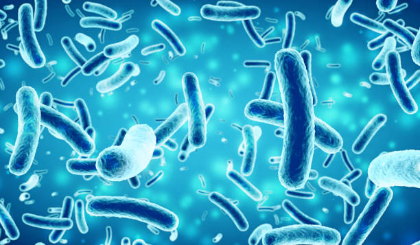 bacteria in a blue background - infectious disease stock pictures, royalty-free photos & images