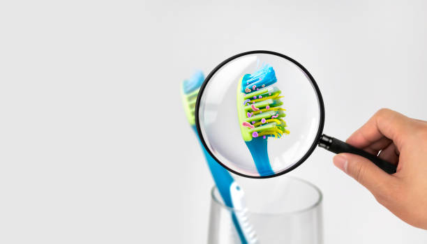 Bacteria in a toothbrush Bacterial enlargement, public health, Bacterium, Toothbrush, Aggression toothbrush stock pictures, royalty-free photos & images