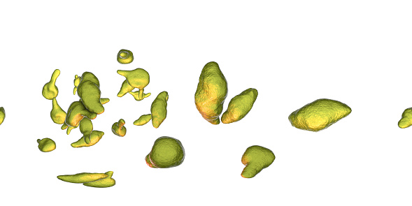 istock Bacteria Mycoplasma genitalium 1156238164