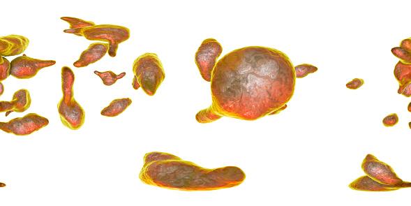 istock Bacteria Mycoplasma genitalium 1156241780