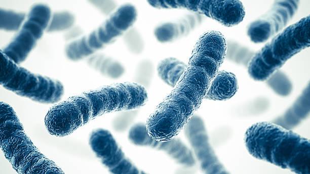 Bacterias - foto de stock
