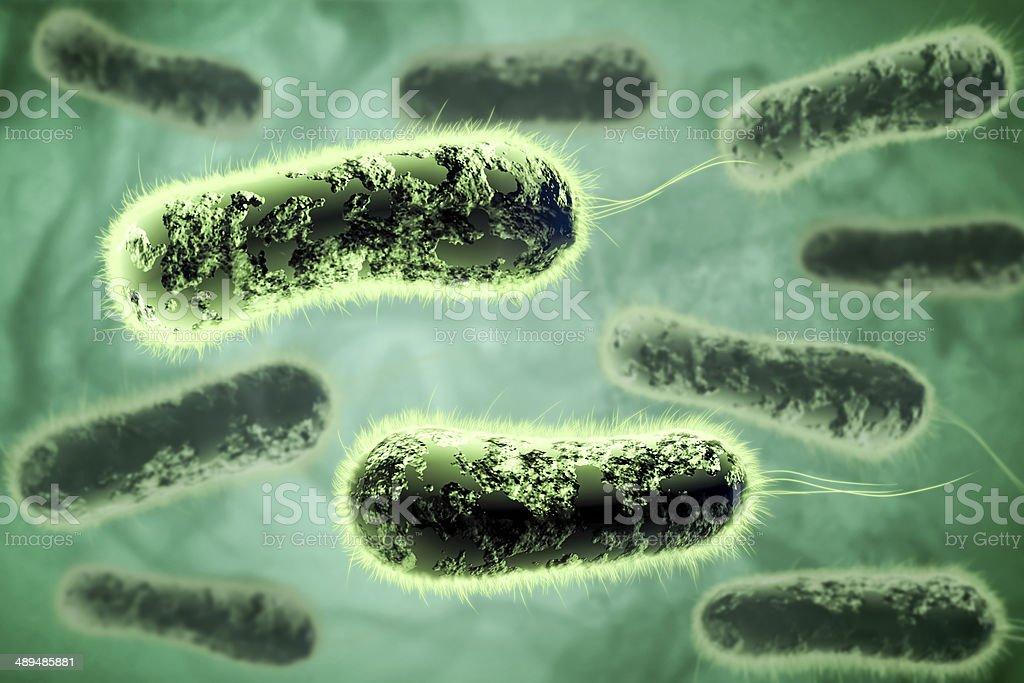 3D bacteria royalty-free stock photo
