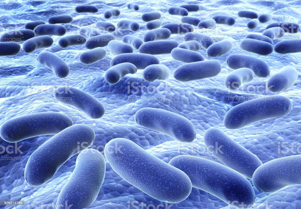 Bacteries stock photo