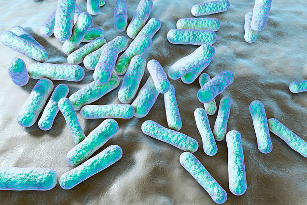 Bacteria which cause acne stock photo