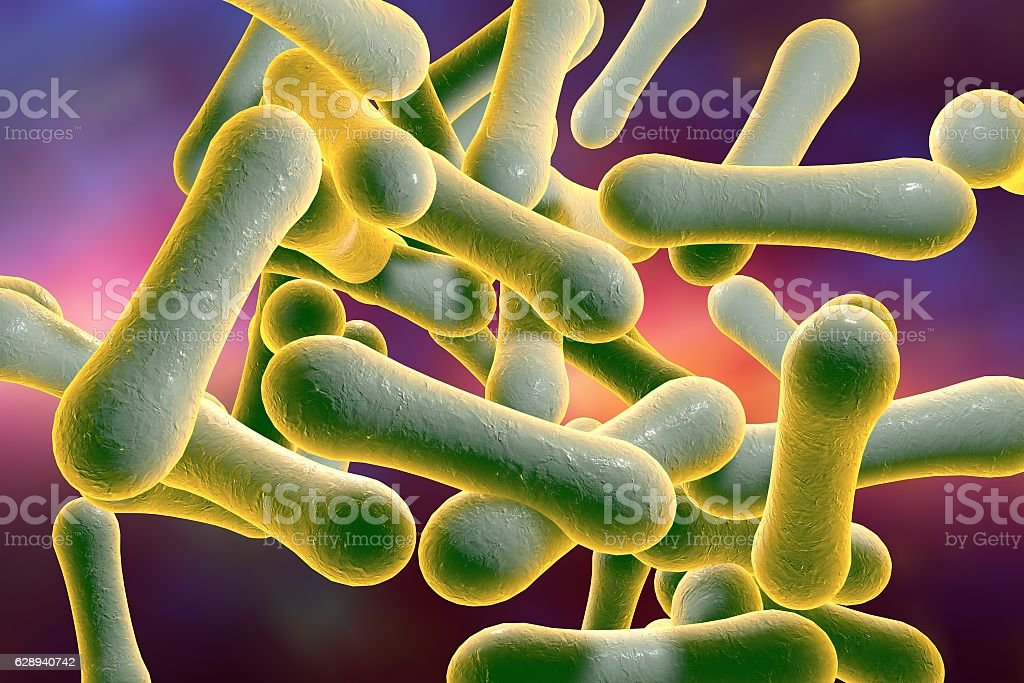 Bacteria which cause diphtheria stock photo