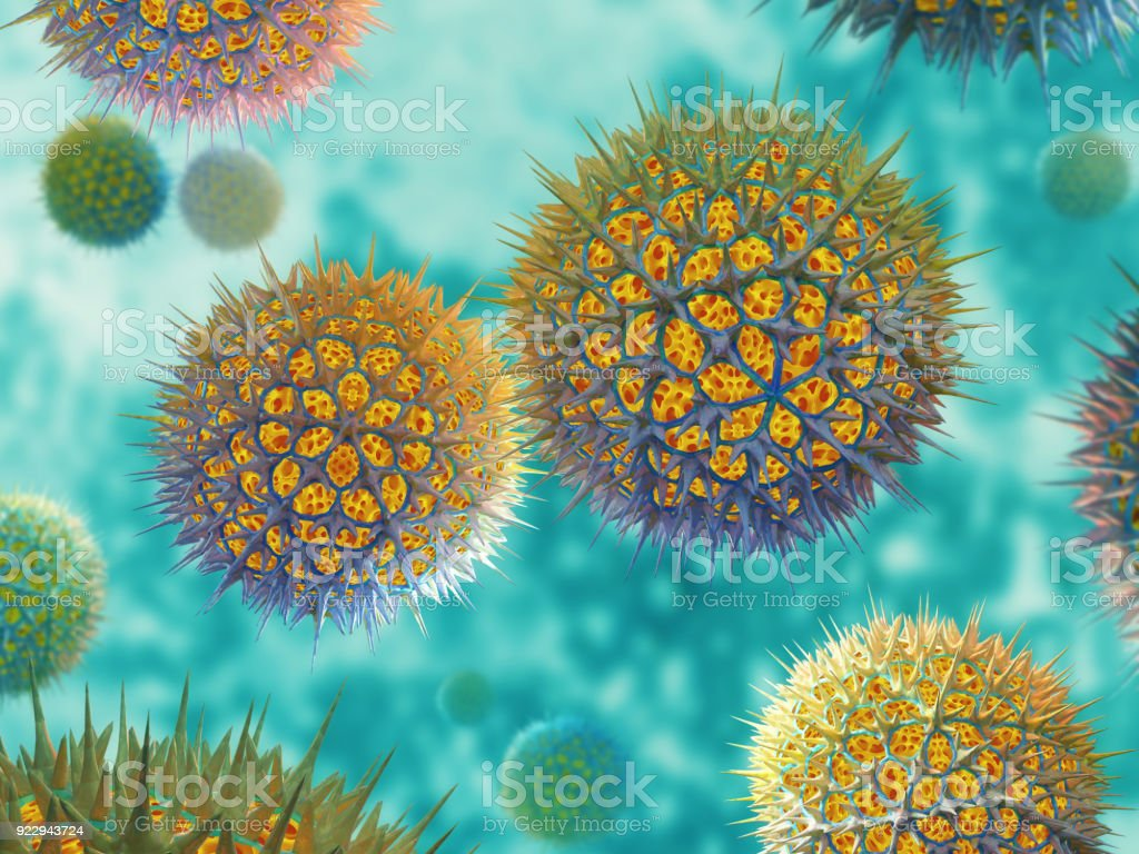 Bacterial cell or virus stock photo