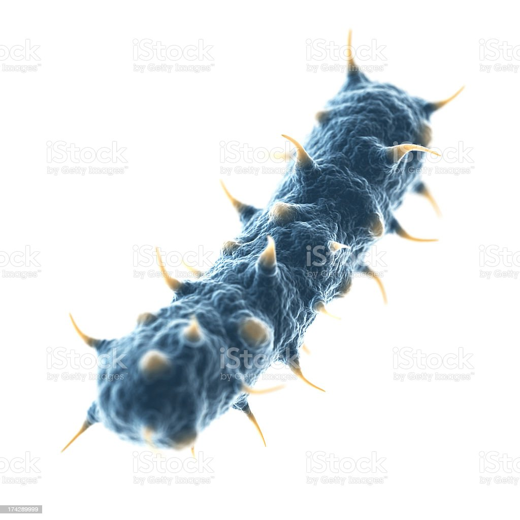 Bacterial Cell stock photo