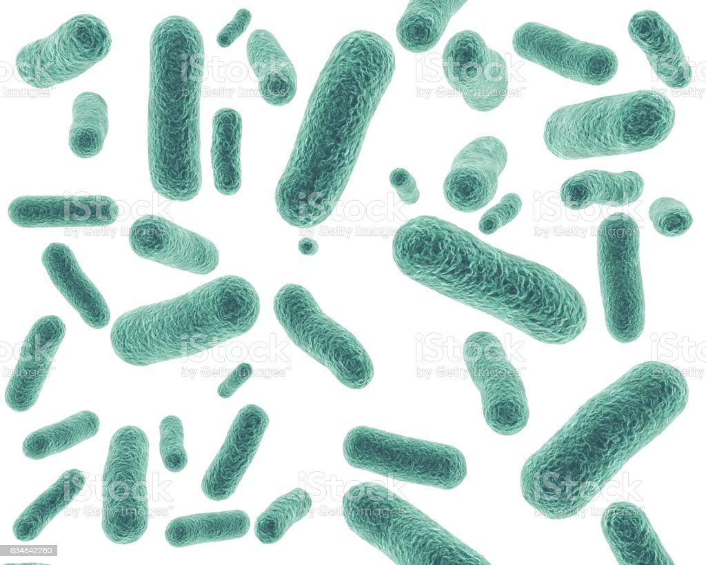 Bacterial cells isolated on white background 3D rendering. stock photo