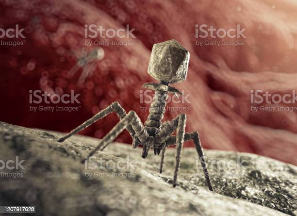 Bacteriophage Virus Attacking Bacterium Stock Photo - Download Image Now