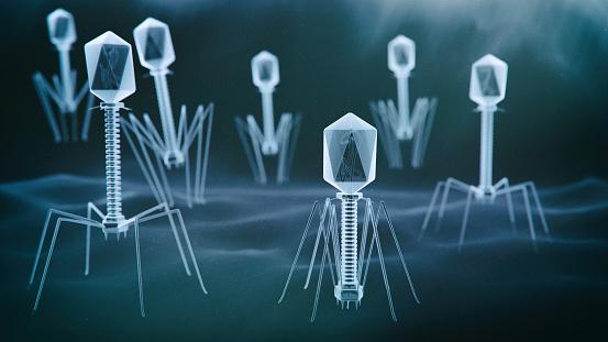 istock Bacteriophage virus 1090385578